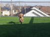 東京都東村山市 N様邸屋上にドッグランとして人工芝を施工しました